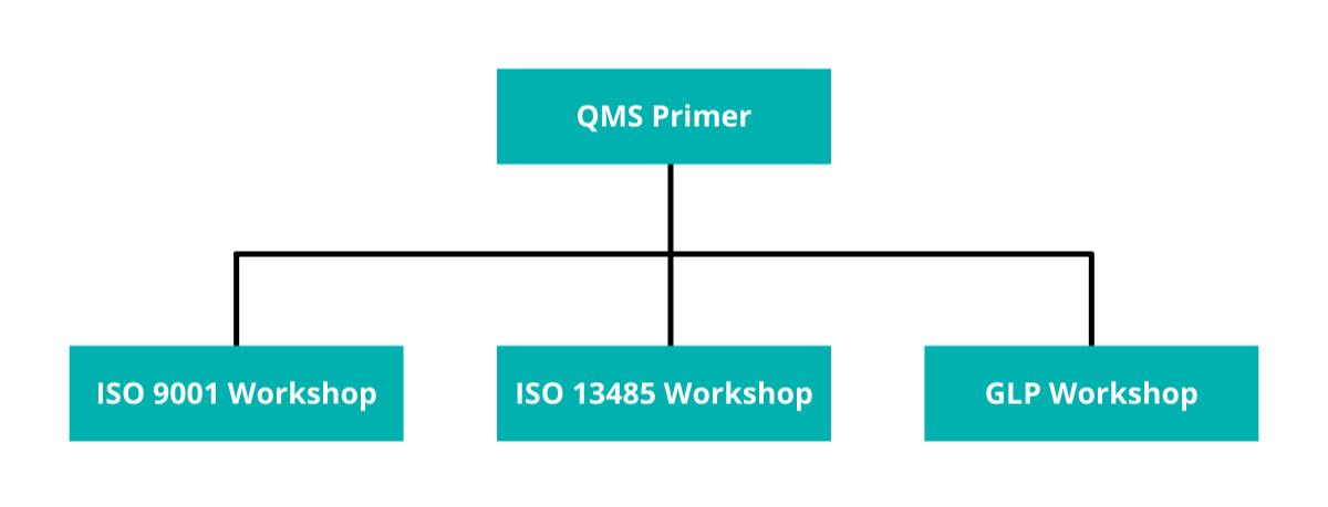 REDI QMS Training Program Structure (1200x459)