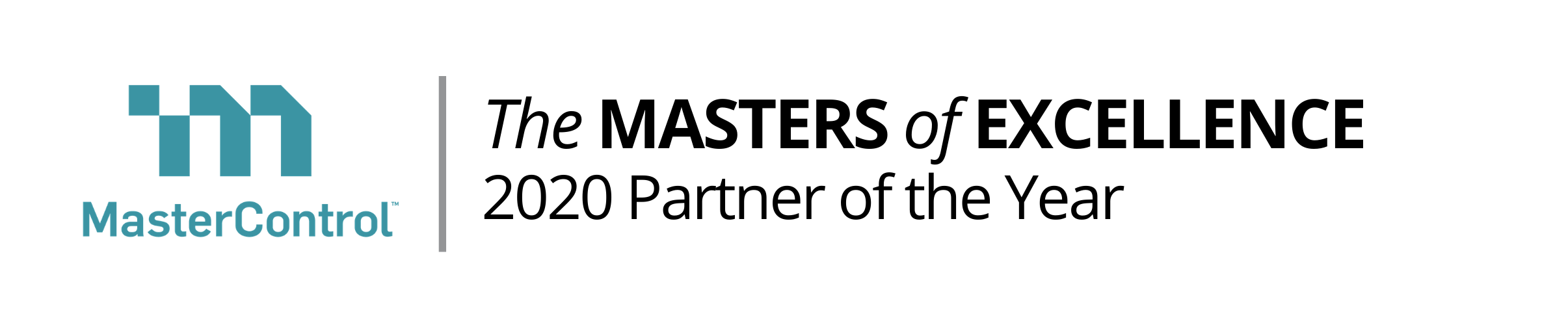 The MASTERS of EXCELLENCE 2020 Partner of the Year